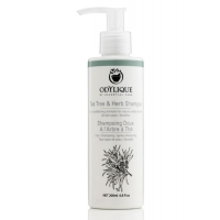 Tea Tree & Herb Shampoo 200 ml - Odylique