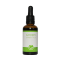 Hydrangea (Vidjehortensia) - Green Lifestyle